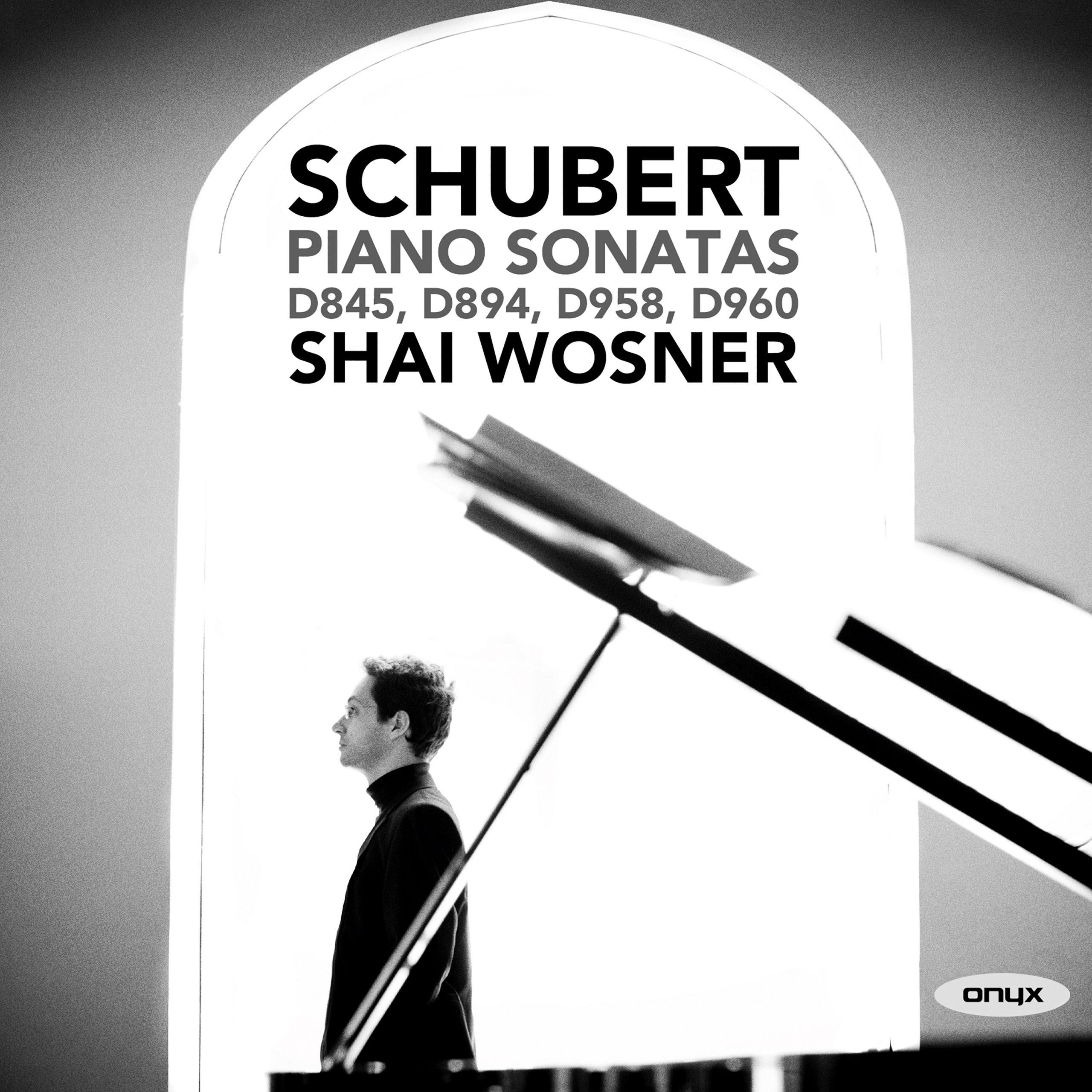 Schubert: Piano Sonatas No. 16, D. 845; No. 18, D. 894; No. 19, D. 958; No. 21, D. 960